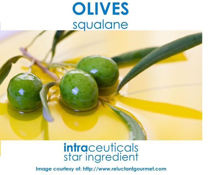 squalene-маслини-салон-нирвана