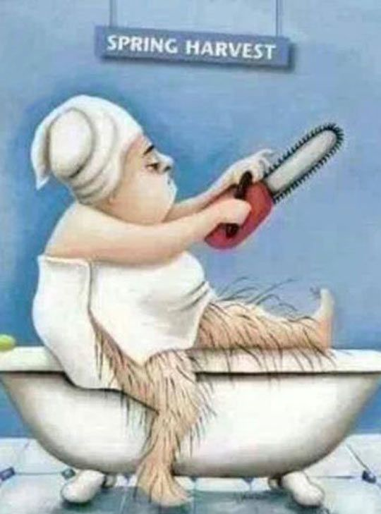 blog2-leg-shaving-spring-harvest